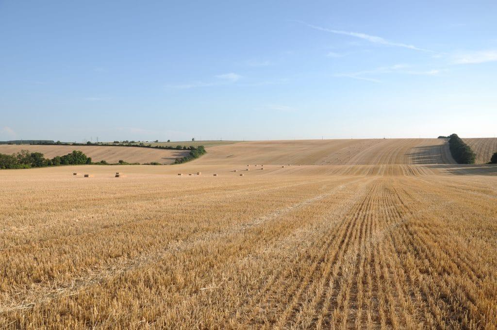 Vynechanie dusíkatého hnojenia pri zaoraní slamy, je jednou z hlavných príčin následného zníženia úrod.