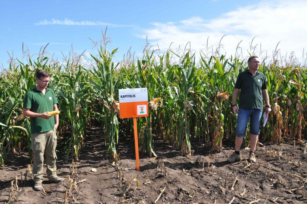 Ponuku hybridov kukurice predstavili Ing. Matúš Javor, produktový manažér KWS a Ing. Ľudovít Císar, regionálny zástupca KWS pre okresy západného Slovenska.